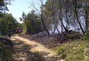 Požar kod Labinci gasilo 17 vatrogasaca – izgorjelo 5000m2 šume i makije