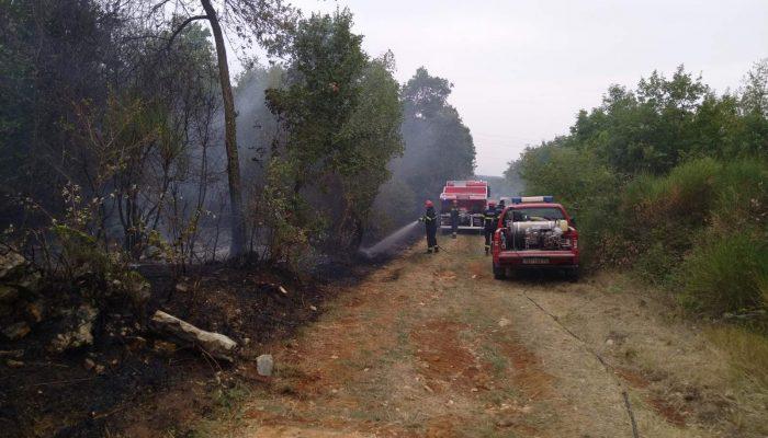 Požar šume i niskog raslinja kod Labinci